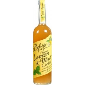 Siroop Lemon en Mint 500 ml