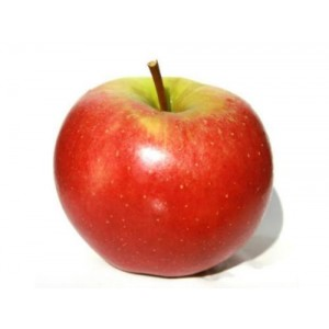 Elstar appelen per 1 kilo
