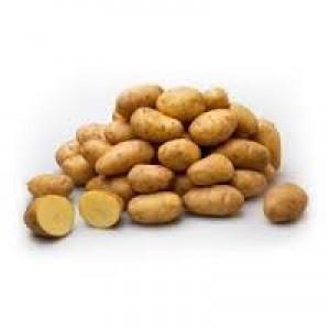 Frieslanders 10 kg