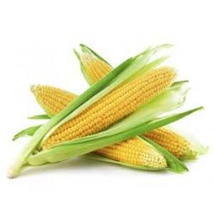 Mais heerlijk zoet per 2 stuks