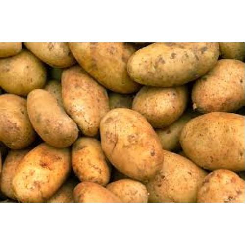 Malta nieuwe oogst 2.5 kilo