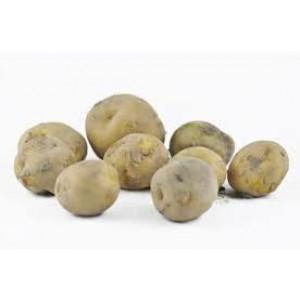 Opperdoes Hollandse nieuwe oogst 1 kilo