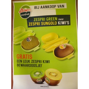 Kiwi gold 5 stuks met gratis kiwibakje